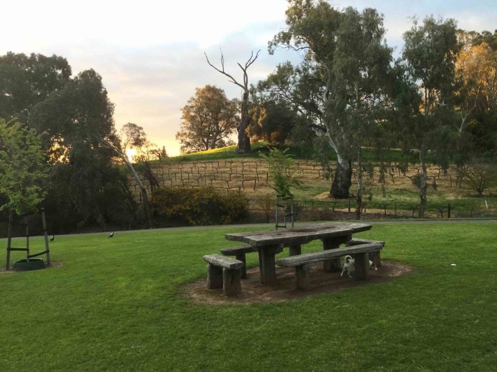 barossa-beauty-5